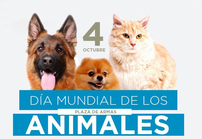 TODOS INVITADOS A CELEBRAR EL DÍA MUNDIAL DE LOS ANIMALES
