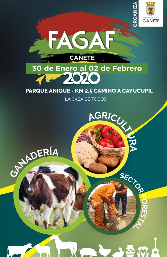 PROGRAMA FAGAF 2020