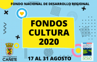 DESCARGA FORMULARIO POSTULACIÓN FONDO CULTURA FNDR 2020