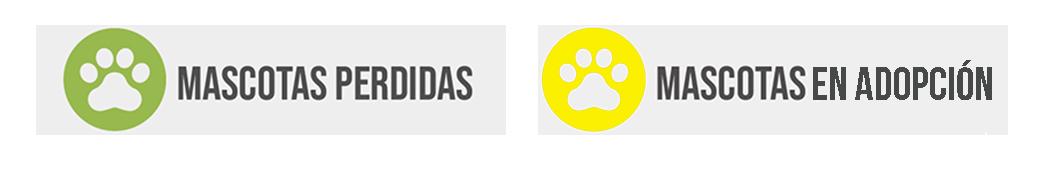 VECINOS DE CAÑETE PODRÁN REPORTAR INFORMACIONES ACERCA DE MASCOTAS EN WEB MUNICIPAL