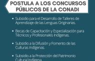 CONADI LANZA CUATRO CONCURSOS PÚBLICOS PARA LA DIFUSIÓN DEL PATRIMONIO CULTURAL INDÍGENA Y PARA LA ESPECIALIZACIÓN DE TÉCNICOS Y PROFESIONALES