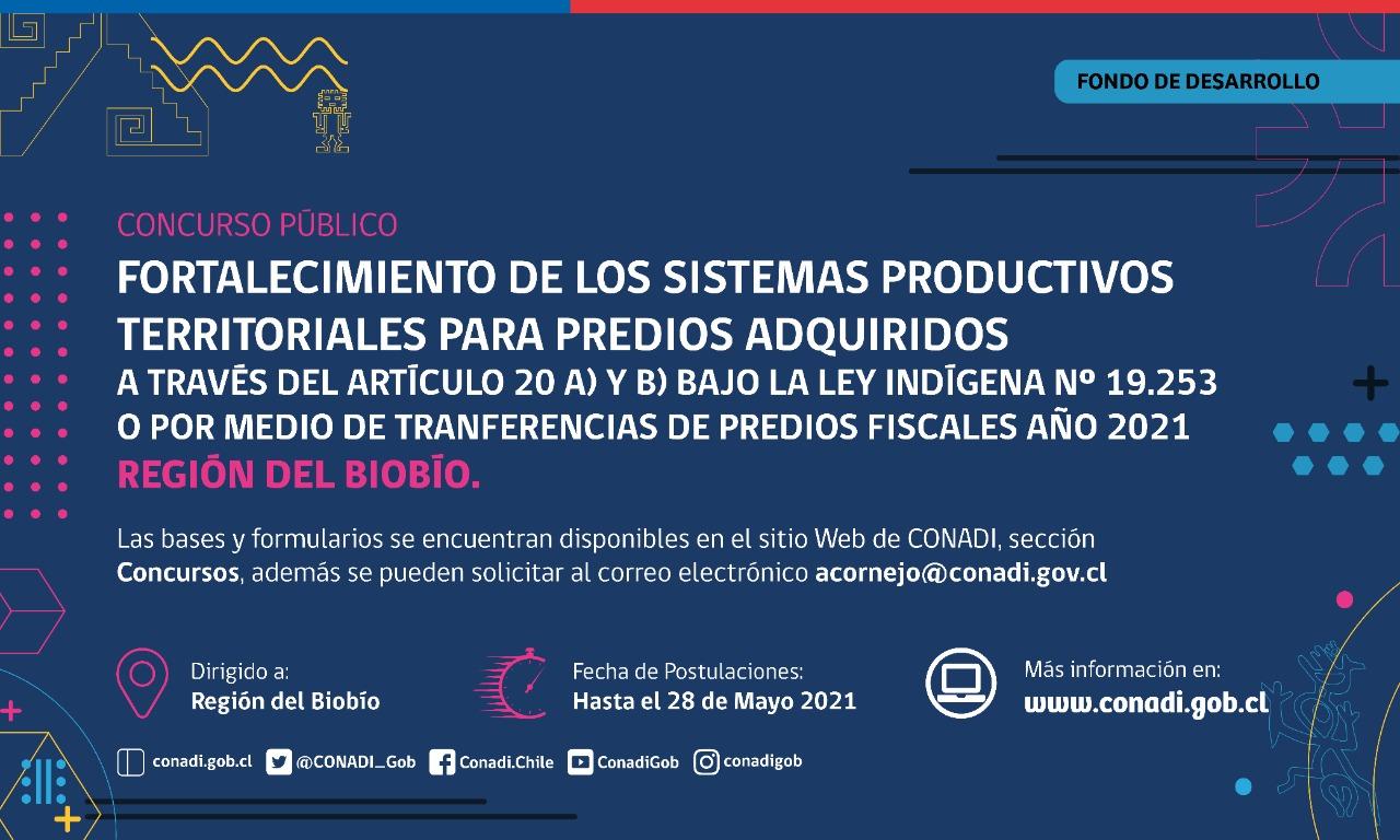 CONADI ABRE CONCURSO PÚBLICO DE FORTALECIMIENTO DE SISTEMAS PRODUCTIVOS PARA TIERRAS INDÍGENAS