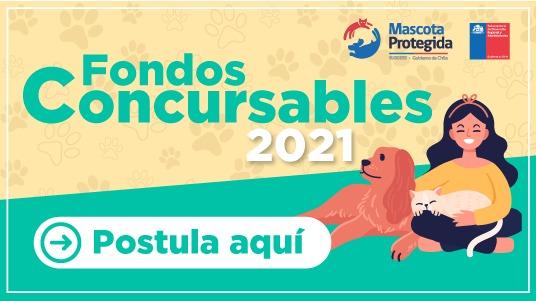 POSTULA AL FONDO CONCURSABLE PARA PROMOVER LA TENENCIA RESPONSABLE DE MASCOTAS