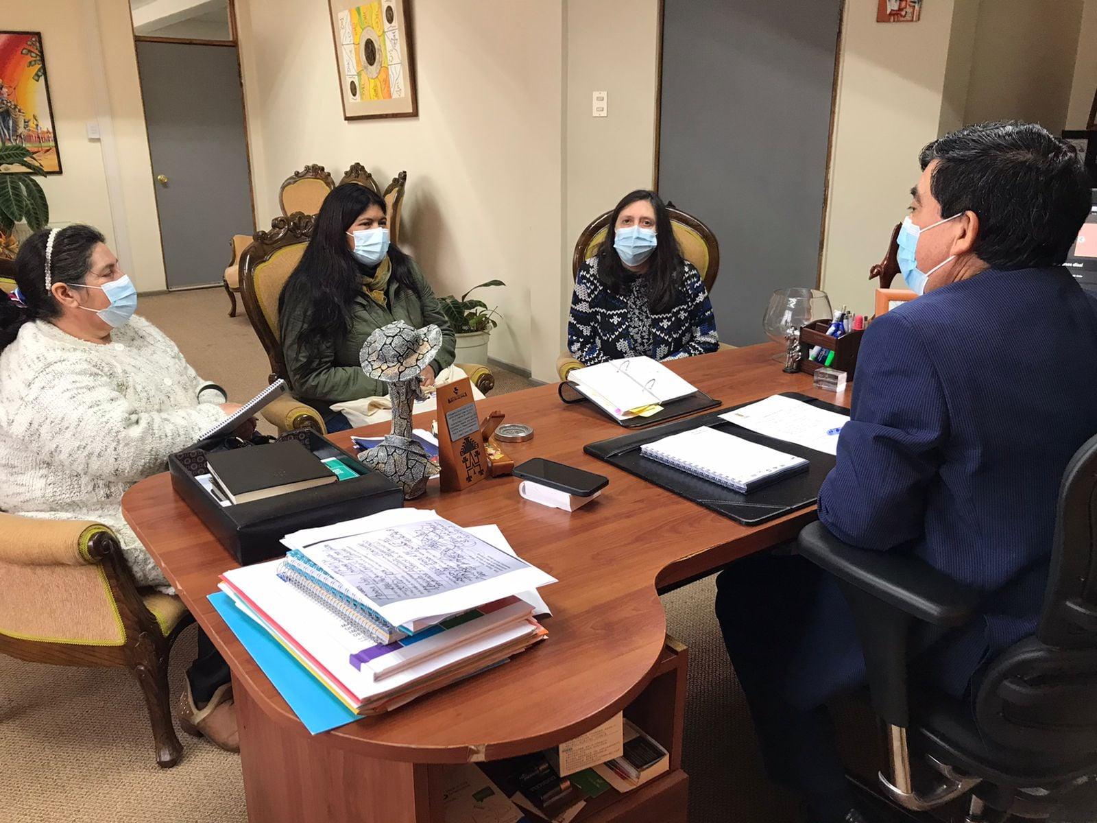 VECINOS DE PELECO, LA RINCONADA Y LA VAINA SE REUNEN CON ALCALDE PARA BUSCAR MEJORAS EN APR